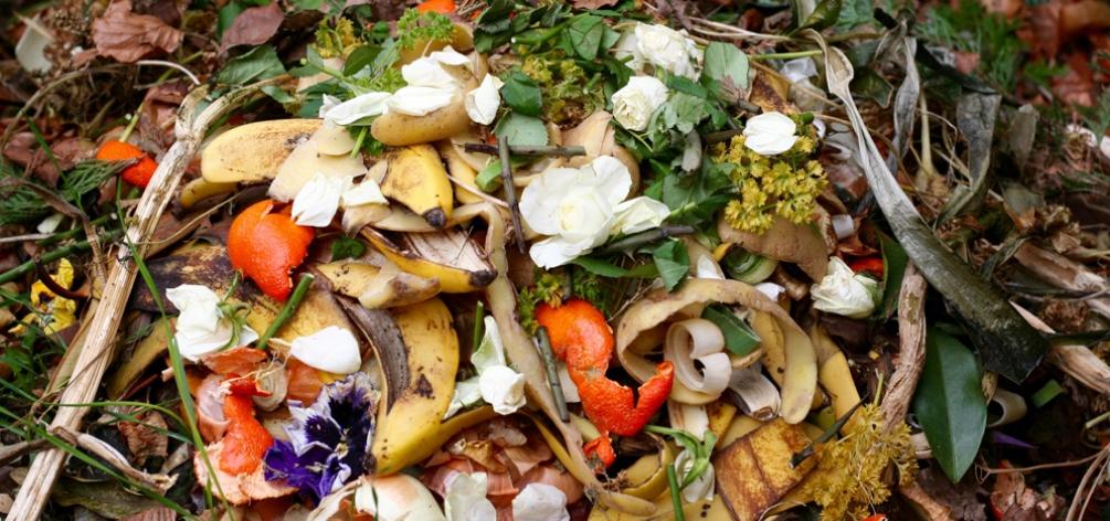 psychological factors of household food waste